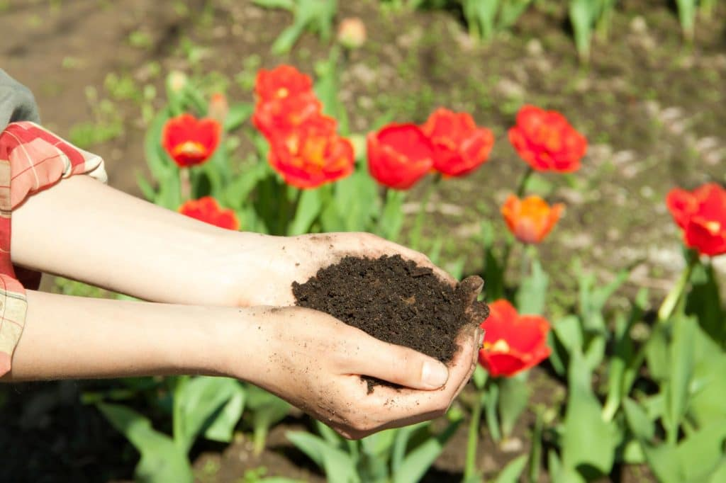 Venta de mantillo natural y tierras vegetales madrid y for Mantillo o sustrato
